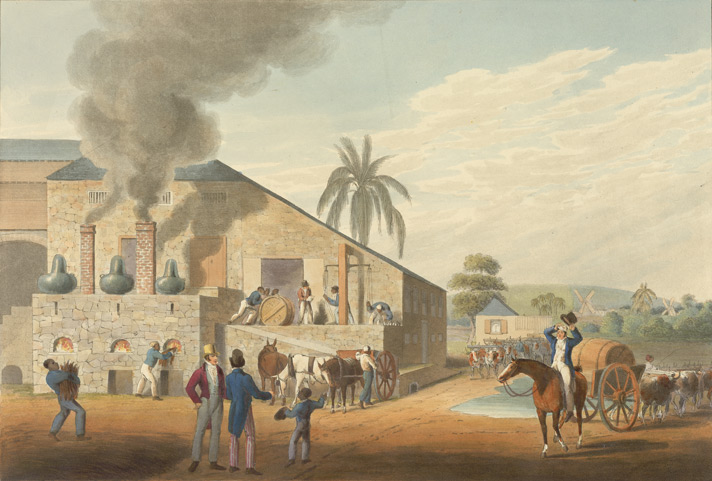 Exterior Of The Curing House and Stills, Antigua